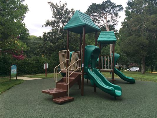 Jungle gym with slides