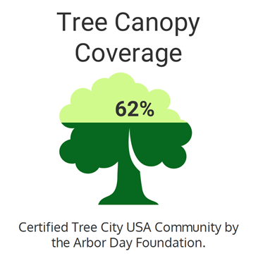 Graph showing 62% tree canopy coverage